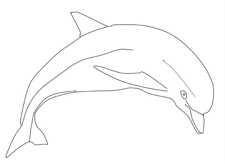раскрась дельфина карандаш и кисть