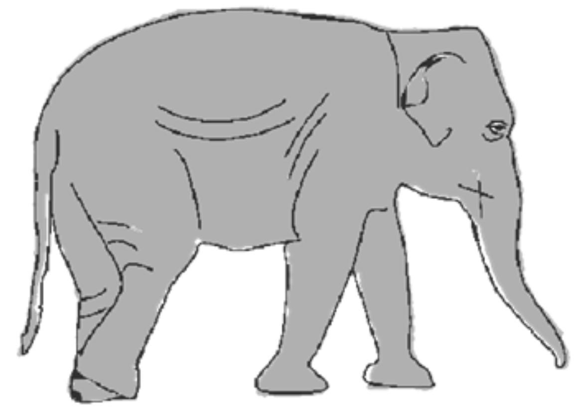 Рисуем слона бесплатный всероссийский конкурс