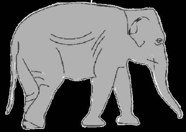 Слон поэтапно