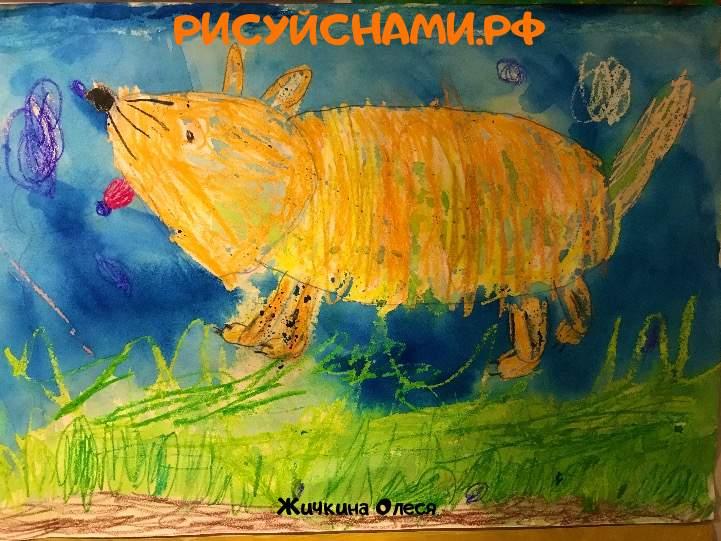 Всероссийский конкурс  Мои любимые животные Заявка 78308  всероссийский творческий конкурс рисунка для детей школьников и дошкольников (рисунок и поделка) - Жичкина Олеся