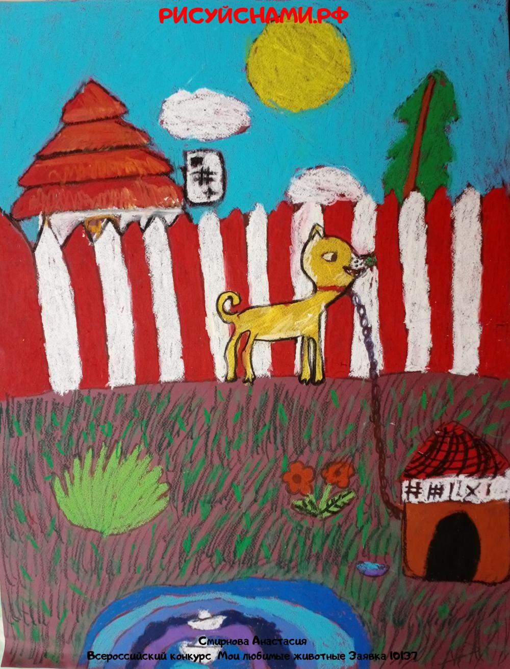 Всероссийский конкурс  Мои любимые животные Заявка 10137  творческие конкурсы рисунков для школьников и дошкольников рисуй с нами #тмрисуйснами рисунок и поделка - Смирнова Анастасия