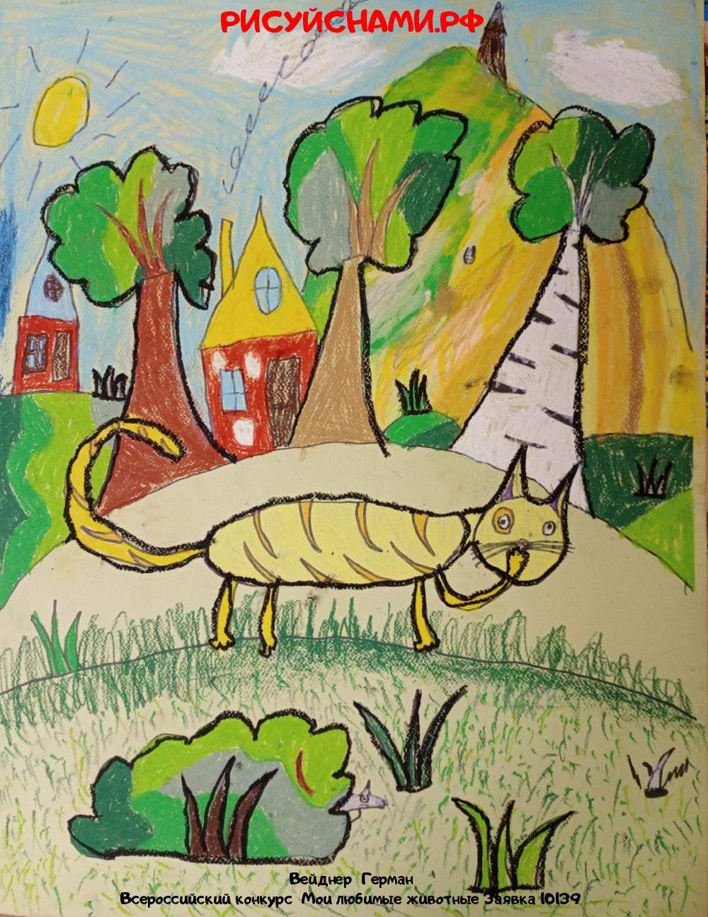 Всероссийский конкурс  Мои любимые животные Заявка 10139  творческие конкурсы рисунков для школьников и дошкольников рисуй с нами #тмрисуйснами рисунок и поделка - Вейднер  Герман
