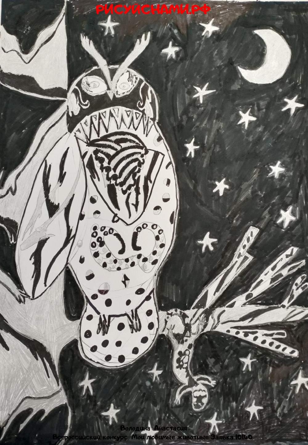 Всероссийский конкурс  Мои любимые животные Заявка 10140  творческие конкурсы рисунков для школьников и дошкольников рисуй с нами #тмрисуйснами рисунок и поделка - Володина  Анастасия