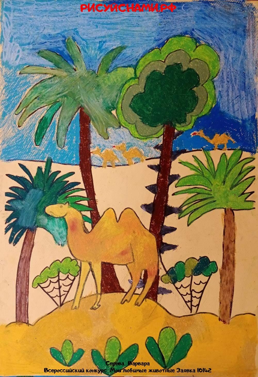 Всероссийский конкурс  Мои любимые животные Заявка 10142  творческие конкурсы рисунков для школьников и дошкольников рисуй с нами #тмрисуйснами рисунок и поделка - Серова  Варвара