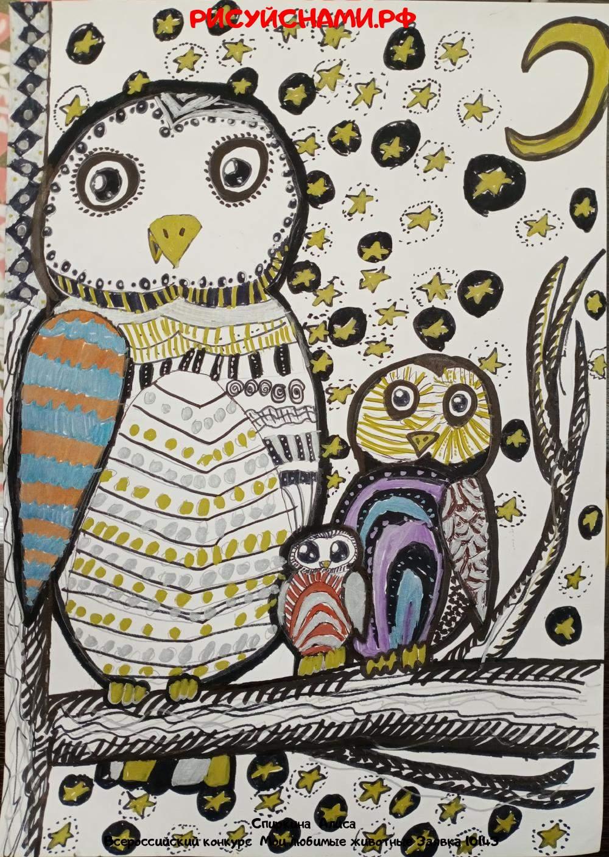 Всероссийский конкурс  Мои любимые животные Заявка 10143  творческие конкурсы рисунков для школьников и дошкольников рисуй с нами #тмрисуйснами рисунок и поделка - Спиркина  Алиса