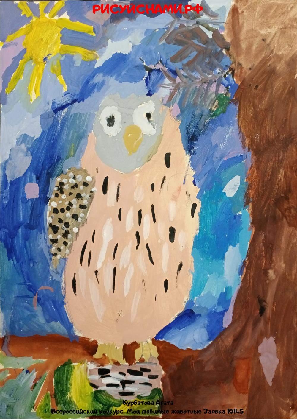 Всероссийский конкурс  Мои любимые животные Заявка 10145  творческие конкурсы рисунков для школьников и дошкольников рисуй с нами #тмрисуйснами рисунок и поделка - Курбатова Агата