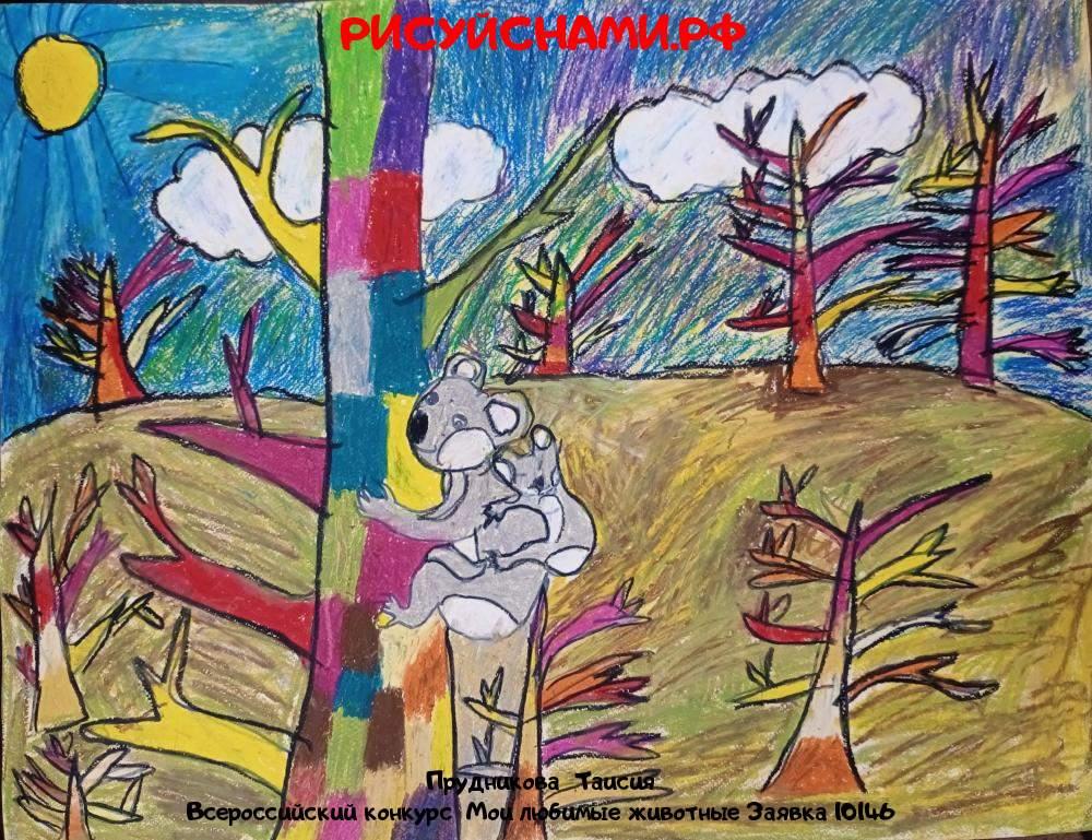Всероссийский конкурс  Мои любимые животные Заявка 10146  творческие конкурсы рисунков для школьников и дошкольников рисуй с нами #тмрисуйснами рисунок и поделка - Прудникова  Таисия