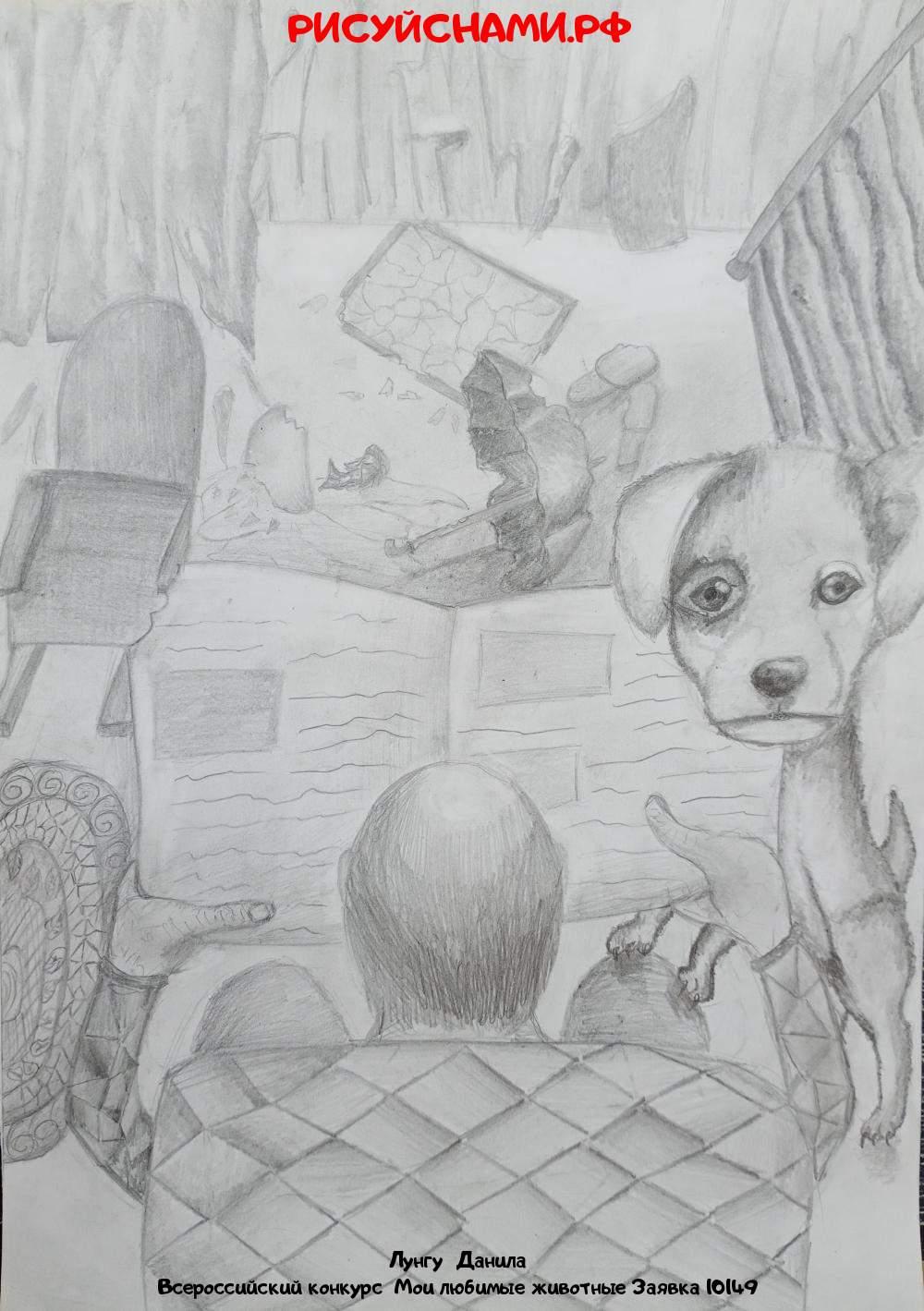 Всероссийский конкурс  Мои любимые животные Заявка 10149  творческие конкурсы рисунков для школьников и дошкольников рисуй с нами #тмрисуйснами рисунок и поделка - Лунгу  Данила