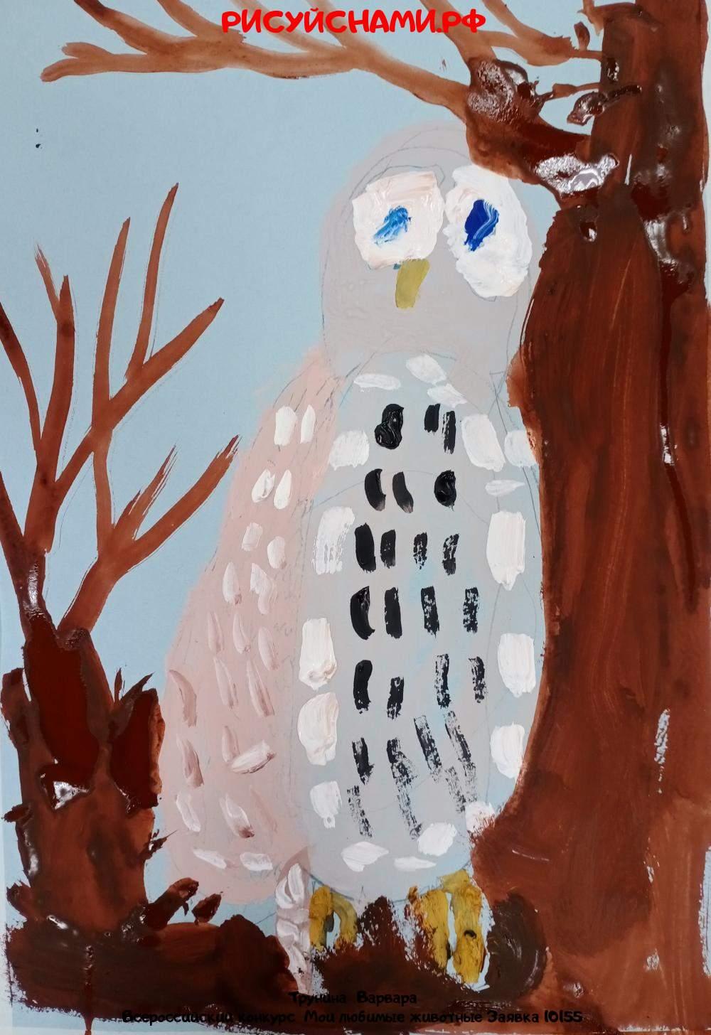 Всероссийский конкурс  Мои любимые животные Заявка 10155  творческие конкурсы рисунков для школьников и дошкольников рисуй с нами #тмрисуйснами рисунок и поделка - Трунина  Варвара