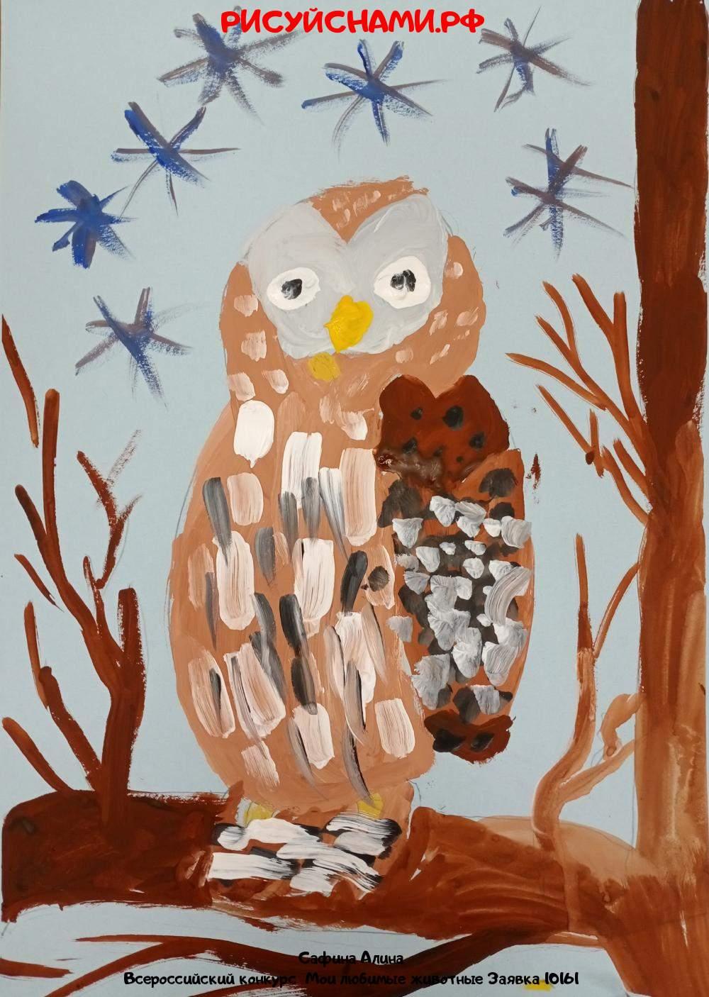 Всероссийский конкурс  Мои любимые животные Заявка 10161  творческие конкурсы рисунков для школьников и дошкольников рисуй с нами #тмрисуйснами рисунок и поделка - Сафина Алина