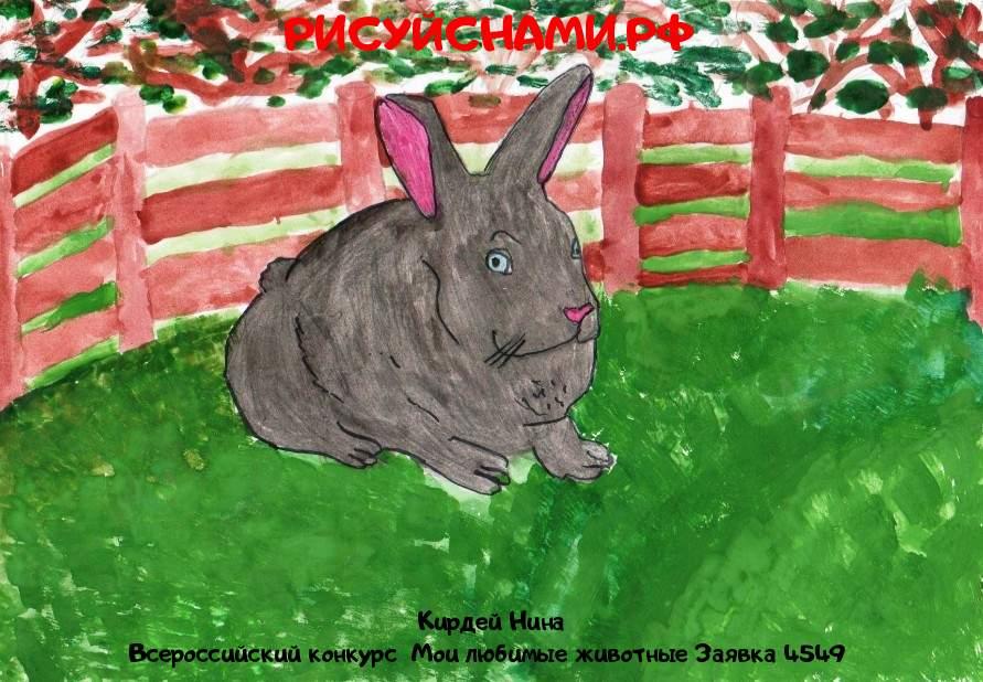 Всероссийский конкурс  Мои любимые животные Заявка 4549  творческие конкурсы рисунков для школьников и дошкольников рисуй с нами #тмрисуйснами рисунок и поделка - Кирдей Нина