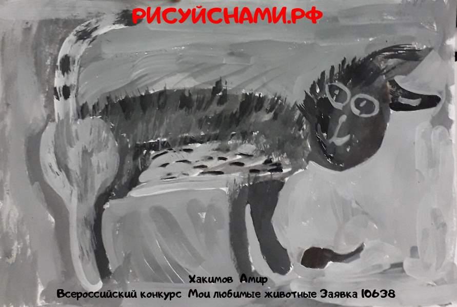 Всероссийский конкурс  Мои любимые животные Заявка 10638  творческие конкурсы рисунков для школьников и дошкольников рисуй с нами #тмрисуйснами рисунок и поделка - Хакимов  Амир