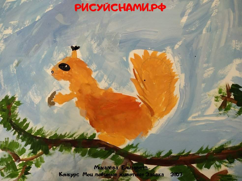 Всероссийский конкурс  Мои любимые животные Заявка 3107  творческие конкурсы рисунков для школьников и дошкольников рисуй с нами #тмрисуйснами рисунок и поделка - Михалёва  Елизавета