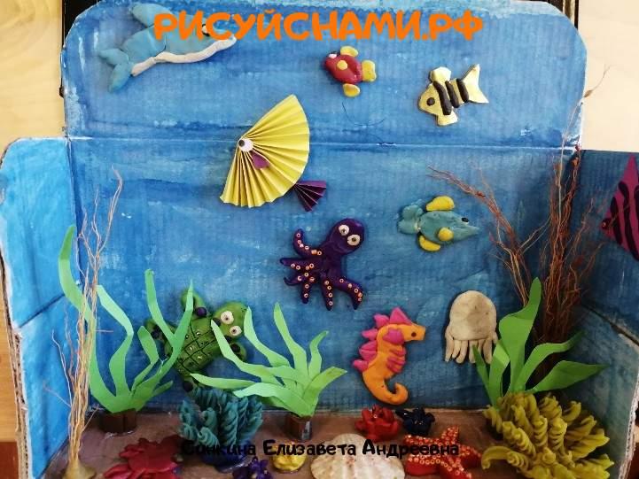 Всероссийский конкурс  Подводный мир Заявка 80219  творческие конкурсы рисунков для школьников и дошкольников рисуй с нами #тмрисуйснами рисунок и поделка - Синкина Елизавета Андреевна