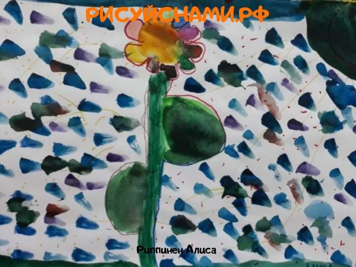 Всероссийский конкурс  В мире цветов Заявка 77819 всероссийский творческий конкурс рисунка для детей школьников и дошкольников (рисунок и поделка) - Риппинен Алиса