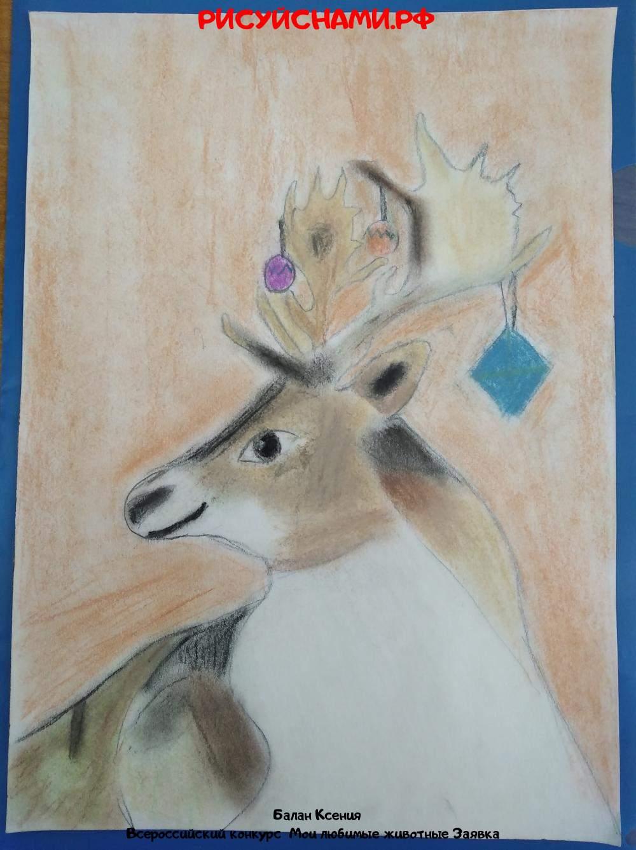 Всероссийский конкурс  Мои любимые животные Заявка 10523  творческие конкурсы рисунков для школьников и дошкольников рисуй с нами #тмрисуйснами рисунок и поделка - Балан Ксения