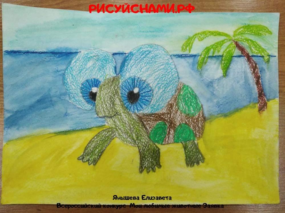 Всероссийский конкурс  Мои любимые животные Заявка 10527  творческие конкурсы рисунков для школьников и дошкольников рисуй с нами #тмрисуйснами рисунок и поделка - Янышева Елизавета