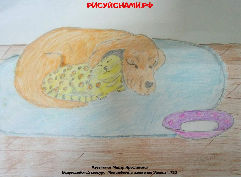 Всероссийский конкурс  Мои любимые животные Заявка 4753  творческие конкурсы рисунков для школьников и дошкольников рисуй с нами #тмрисуйснами рисунок и поделка - Кузьминов Макар Ярославович