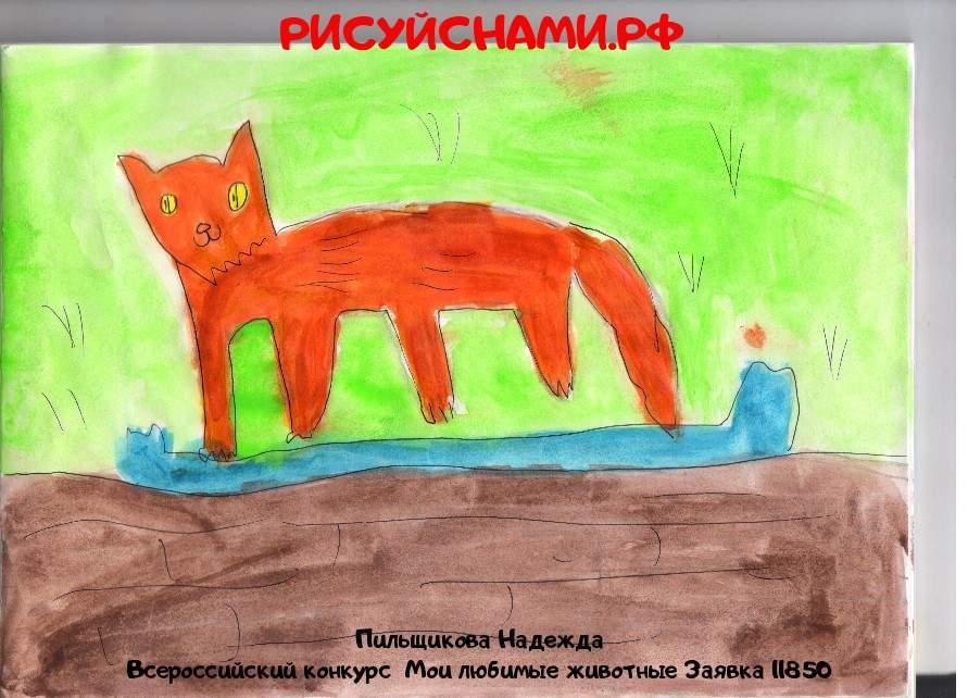 Всероссийский конкурс  Мои любимые животные Заявка 11850  творческие конкурсы рисунков для школьников и дошкольников рисуй с нами #тмрисуйснами рисунок и поделка - Пильщикова Надежда