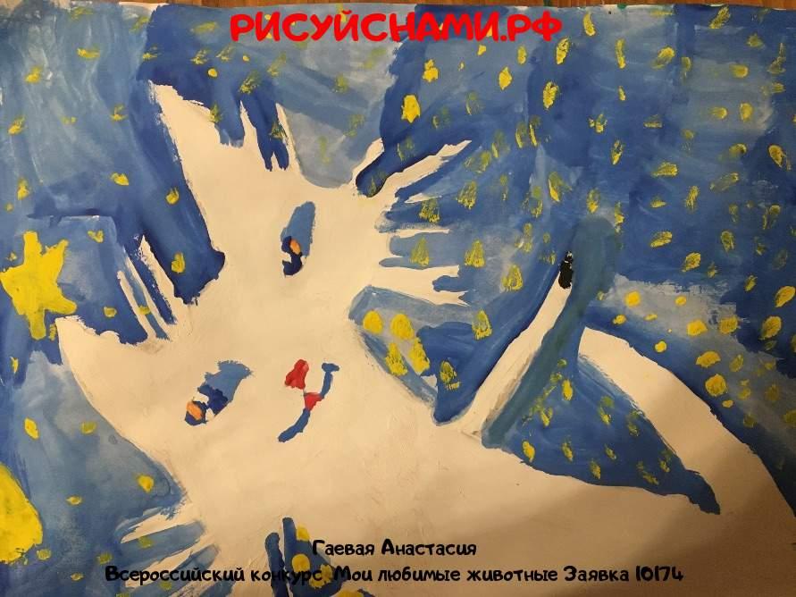 Всероссийский конкурс  Мои любимые животные Заявка 10174  творческие конкурсы рисунков для школьников и дошкольников рисуй с нами #тмрисуйснами рисунок и поделка - Гаевая Анастасия